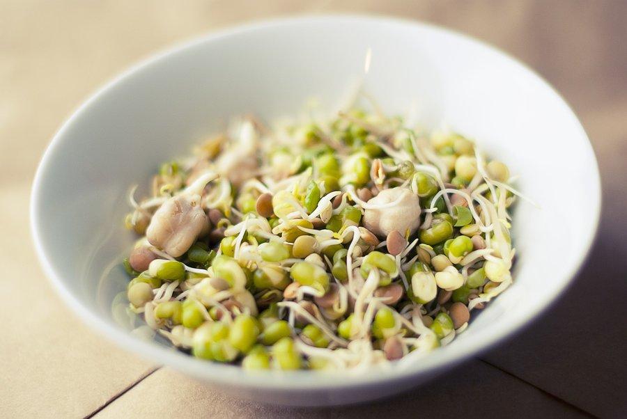 sója - zdroj fytohormonu