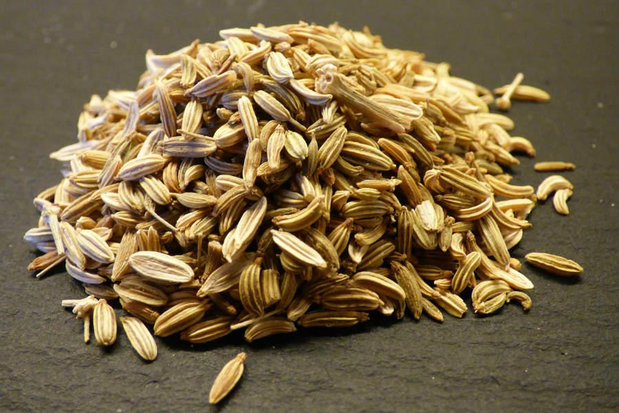 fenykl semena